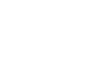 Houston Flood Museum