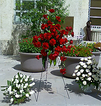 image of funeral roses