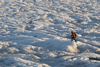 image of man on artic ice