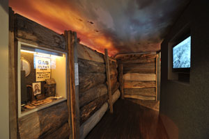 Trench Room
