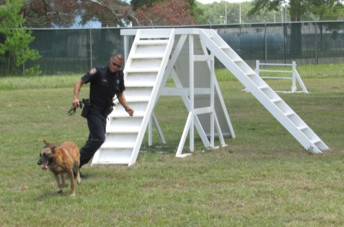 One of the officers running a K9 candidate through an obstacle course