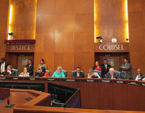 The Houston City Council unanimously passed an ordinance that will establish a Tax Increment Reinvestment Zone in the Montrose area.