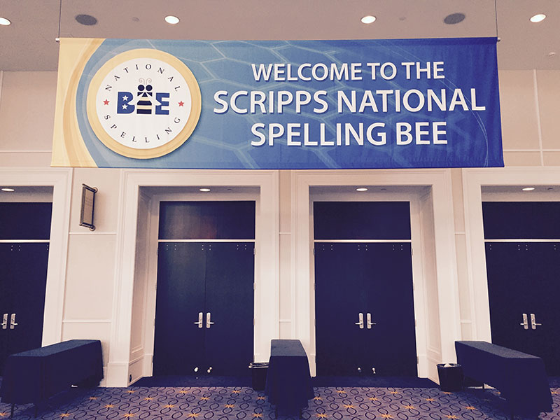 SpellingBee1-connie-hill-800px.jpg