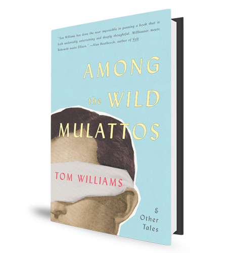 Among the Wild Mulattos Tom Williams Book Cover