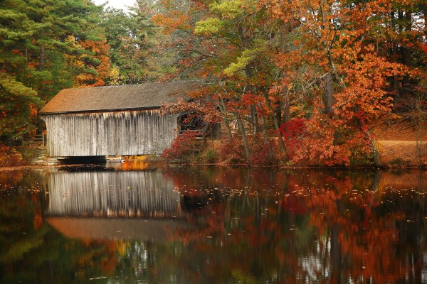 A photo of a covered bridge in Massachusetts amid fall foliage