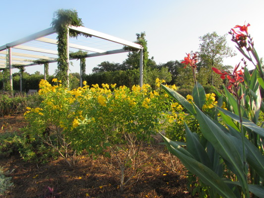 Photo of walkway leading to Cherie Flores Garden Pavilion in Hermann Park.