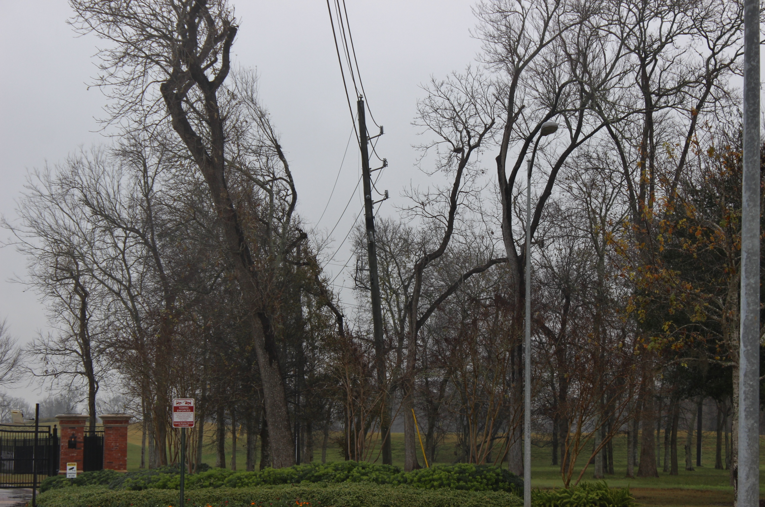 CenterPoint Energy says it's increasing tree-trimming near power lines