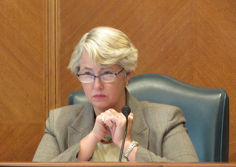 Mayor Annise Parker at a city council meeting