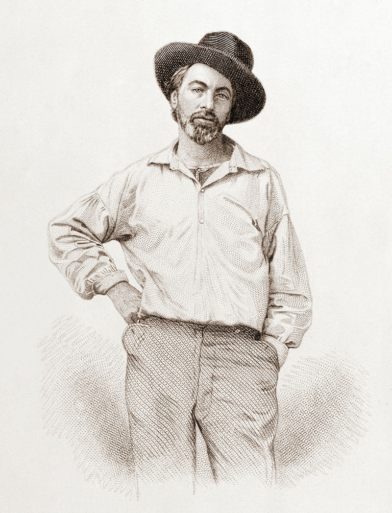 Walt Whitman Engraving - Gabriel Harrison - Mrgan Library and Museum