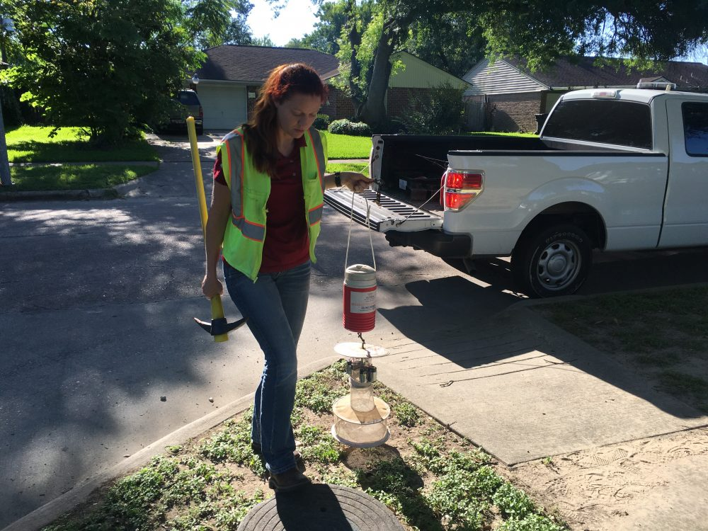 Entomologist Christy Roberts retrieves a mosquito trap from a storm drain. The trap uses a light and dry ice to attract mosquitoes.