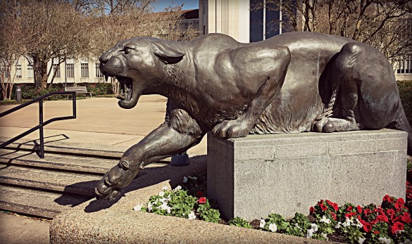 A statue of the Cougar mascot at the University of Houston taken March 5, 2016. (Photo: Michael Hagerty, Houston Public Media)