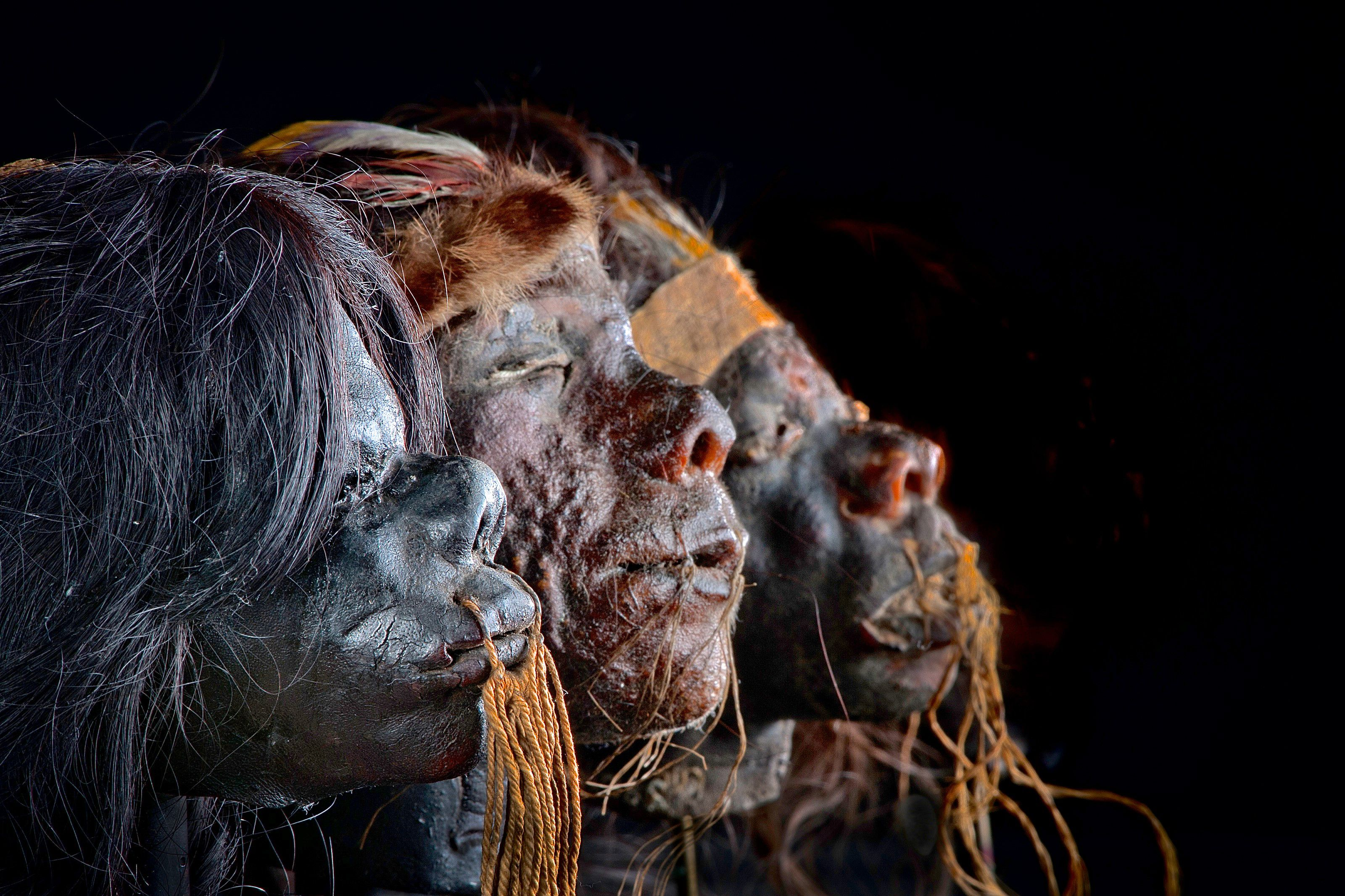 Mummies of the World - Courtesty HMNS