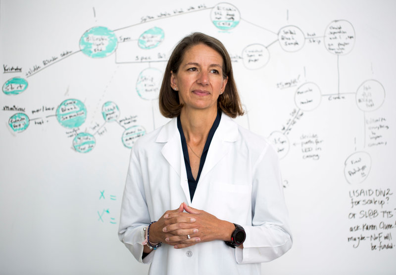 Dr. Rebecca Richards-Kortum of Rice University. Image Courtesy: MacArthur Foundation.