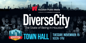 DiverseCity-TownHall-Wide-Banner-NOV15-2160x1080