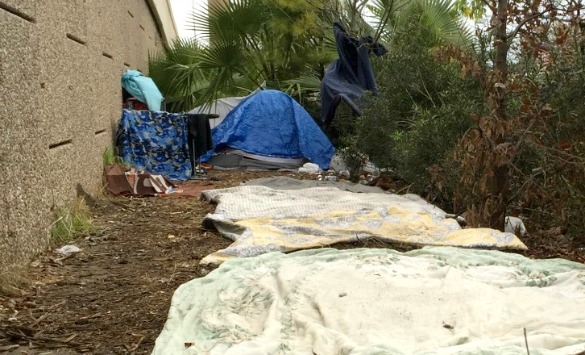Homeless Count Tent - Syeda Hasan