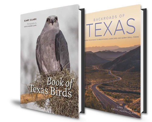 Backroads and Birds Book Cover Combo