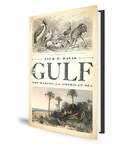 The Gulf Book Cover
