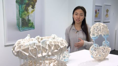 Artist Shiyuan Xu talks about her work on display at Capsule Gallery