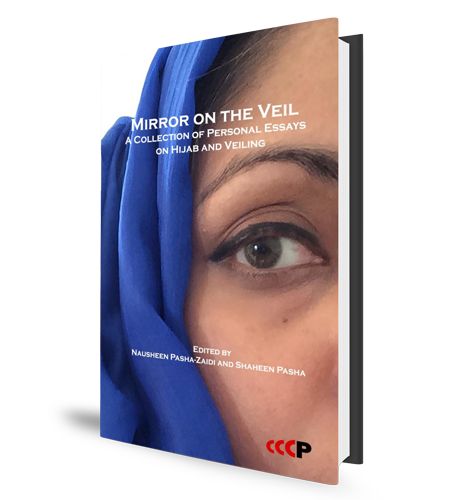 Mirror on the Veil - Book Cover