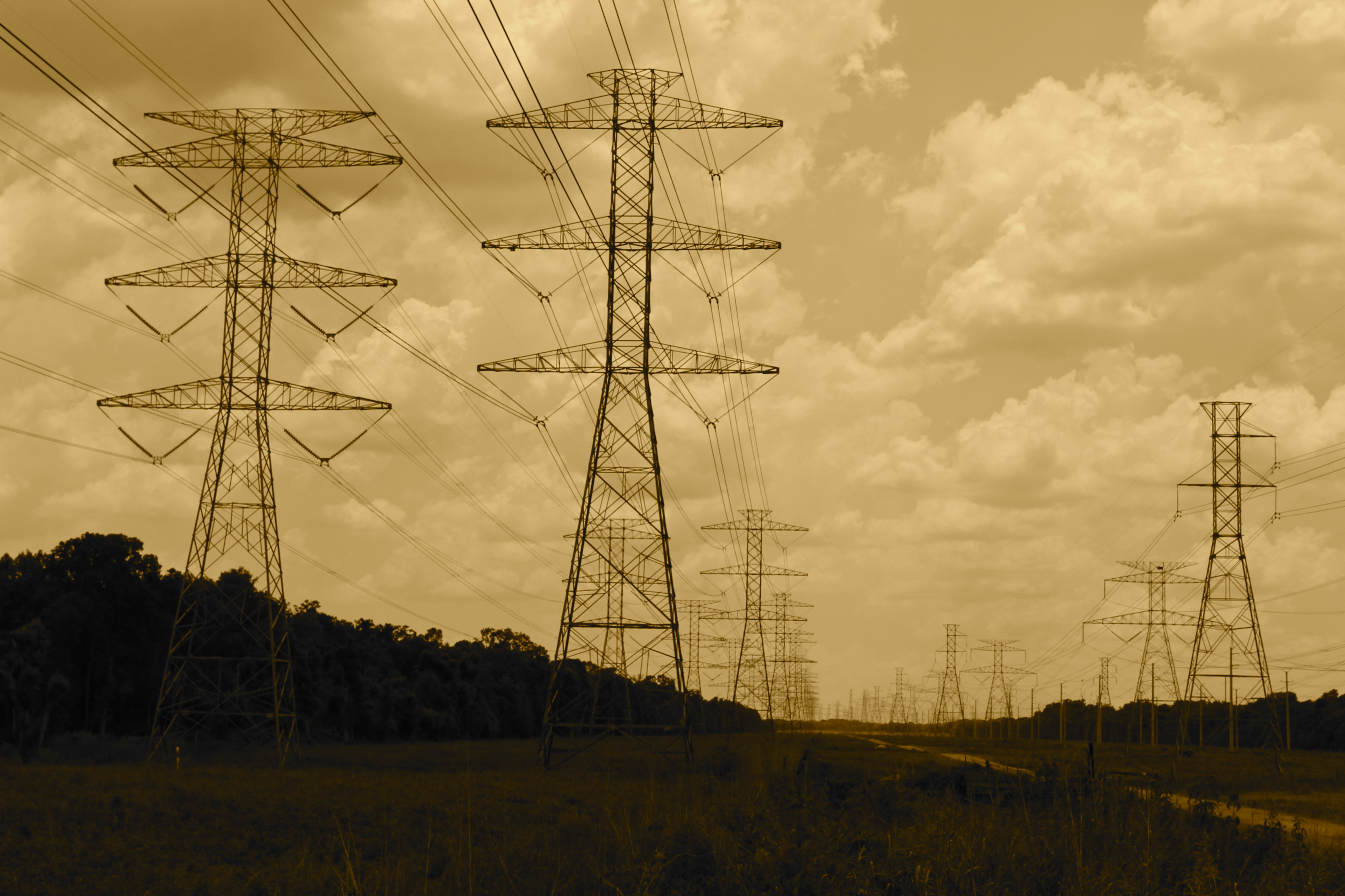 Report Finds Mixed Results From Electric Market