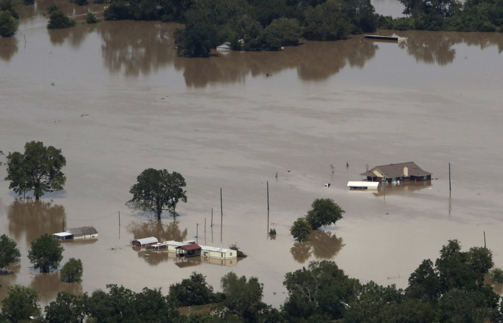 Homes are surrounded by water from the flooded Colorado River in the aftermath of Hurricane Harvey Friday, Sept. 1, 2017, near Wharton, Texas.