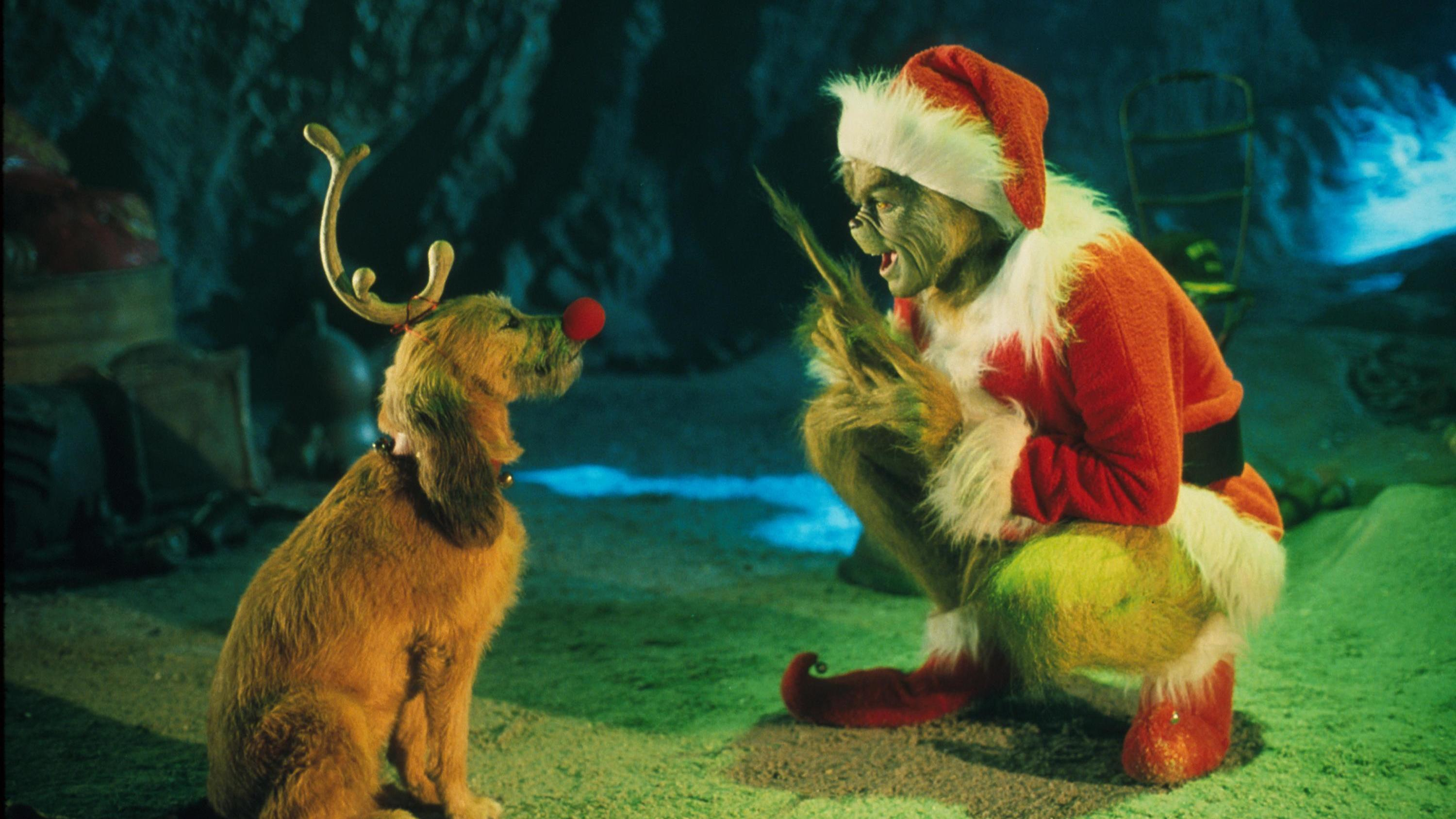 the grinch played by jim carrey conspires with his dog max to deprive the - How The Grinch Stole Christmas Jim Carrey