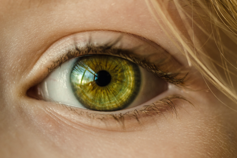Eye Doctor Closeup - Pexels