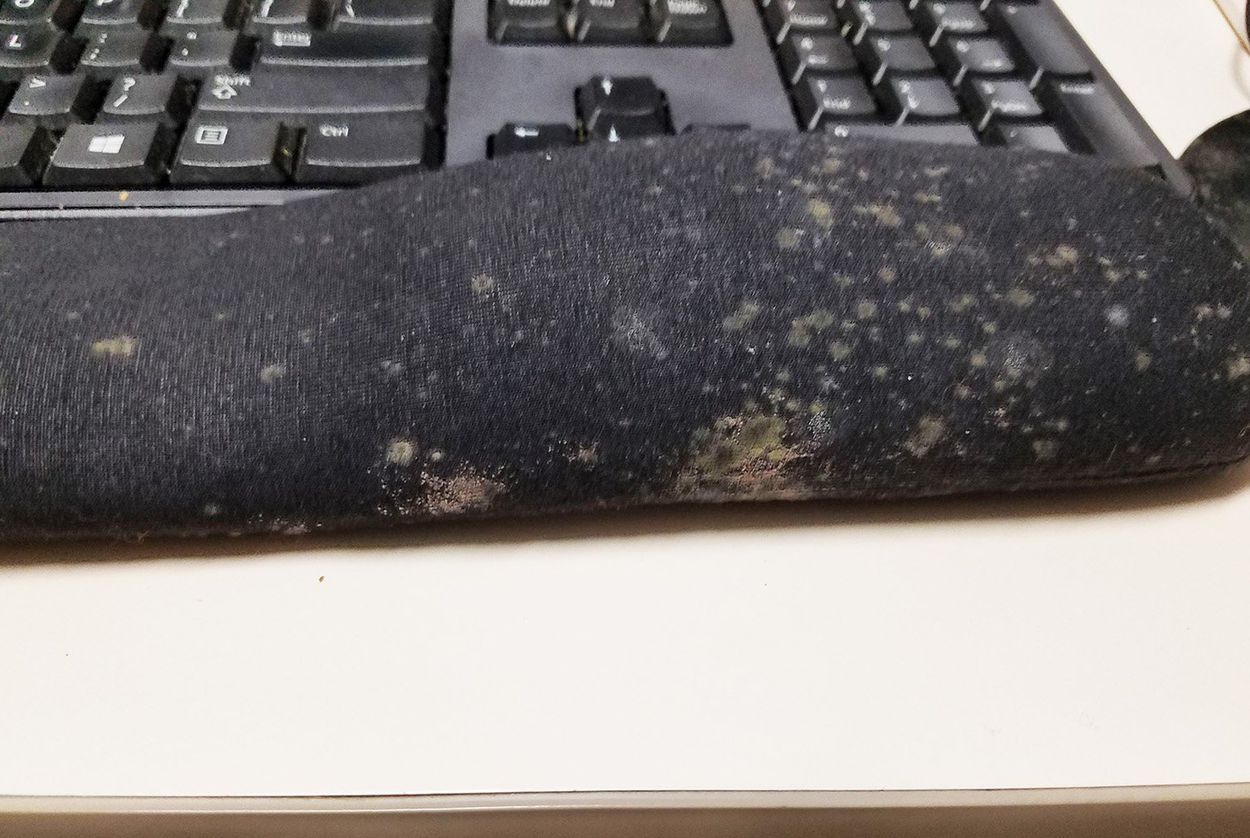 Mold on a computer wrist rest at the Austin State Hospital 636 building.