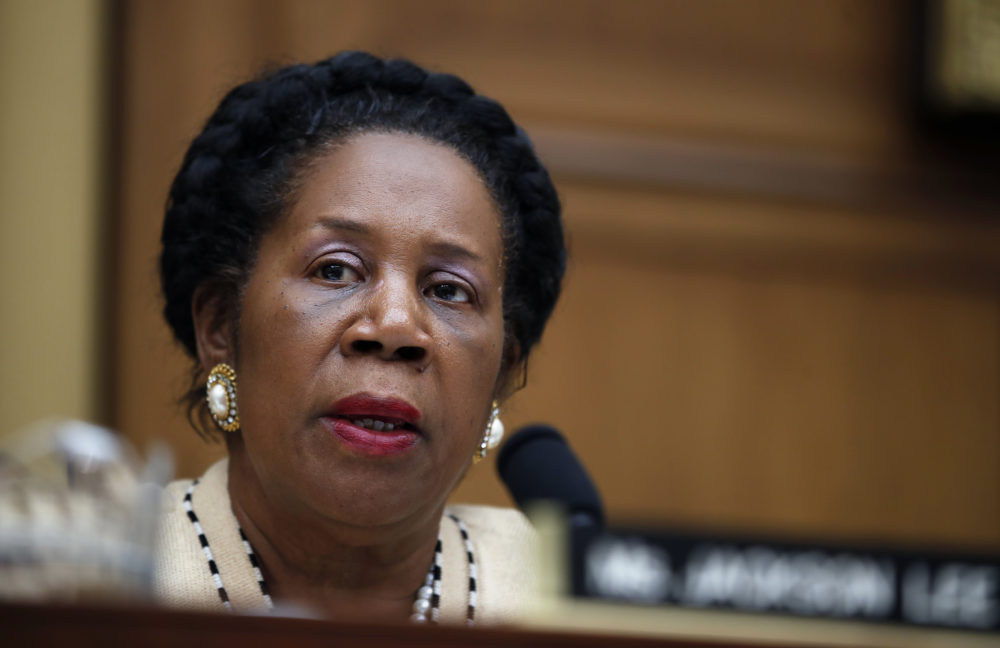 Ranking Member Rep. Sheila Jackson Lee, D-Texas, speaks during a hearing of the House Judiciary subcommittee on Crime, Terrorism, Homeland Security, and Investigations, on Capitol Hill, in Washington, Tuesday, April 4, 2017. (AP Photo/Alex Brandon)