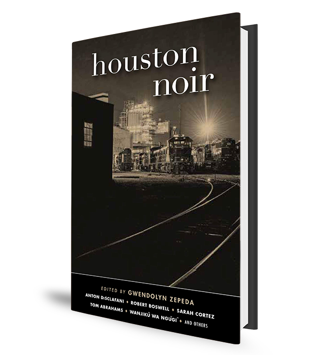 Houston Noir Book