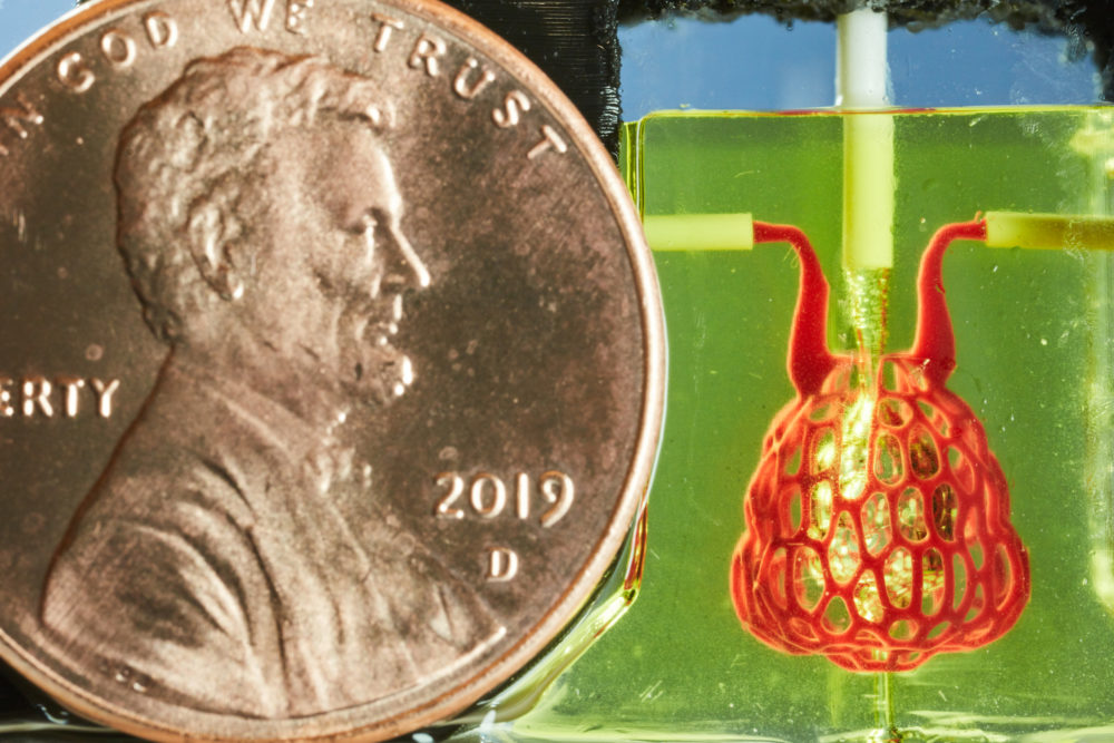Penny and 3D Printed Air Sac